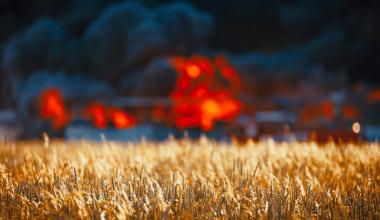 Brennendes Heu: Leistungskürzung wegen grober Fahrlässigkeit?