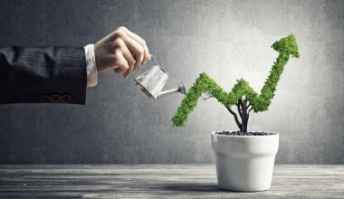 Nachhaltige Kapitalanlagen: Finanzberater sind der Schlüssel