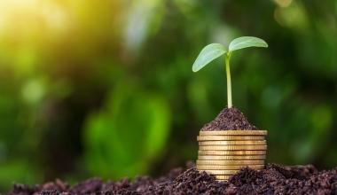 DJE Kapital legt nachhaltigen Mischfonds auf