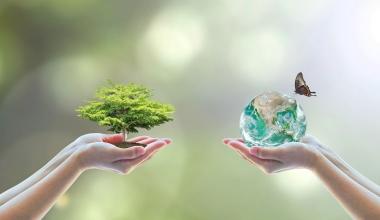 Berenberg startet nachhaltigen Aktienfonds