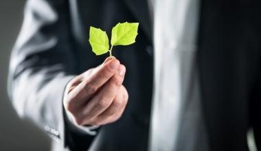 Nachhaltigkeit hat auch in der Krise eine positive Renditewirkung