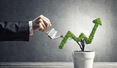 """""""Finanzkraft schafft die notwendigen Freiräume für die Kapitalanlage"""""""