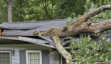 Versicherter Gebäudeschaden ohne unmittelbare Sturmeinwirkung