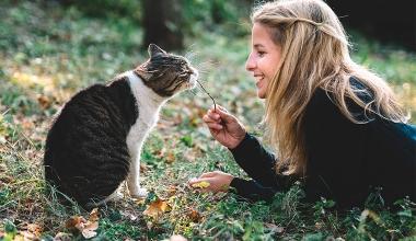 GHV VERSICHERUNG: Neue Produkte für Stubentiger und Schmusekatzen