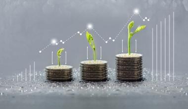 Nachhaltige Fonds bleiben stark gefragt