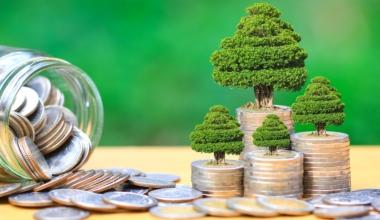 Green Bond Fonds fassen Fuß am deutschen Markt