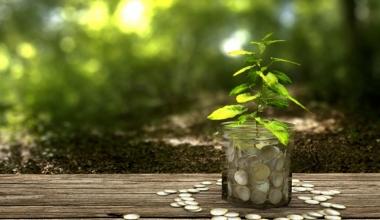 Neuer nachhaltiger Aktienfonds von Kames Capital