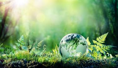 Neuer nachhaltiger Fonds für R+V-Fondspolicen