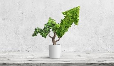 Nachhaltige Geldanlagen gewinnen weiter an Bedeutung