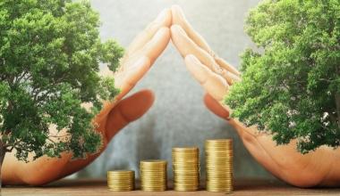 Nachhaltige Geldanlage boomt bei Privatanlegern