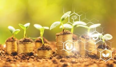 AllianzGI erweitert Angebot nachhaltiger Fonds