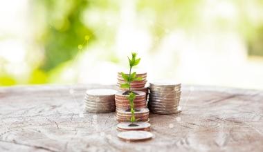 ebase stellt Vermögensverwaltung auf Nachhaltigkeit um