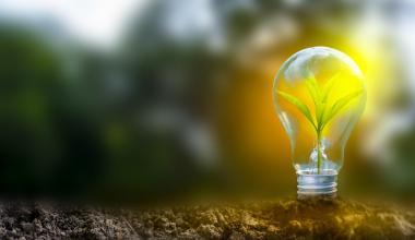"""Neue Brancheninitiative """"Nachhaltigkeit in der Lebensversicherung"""""""