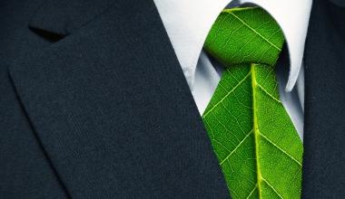 AllianzGI folgt Trend und legt Fonds für grüne Anleihen auf