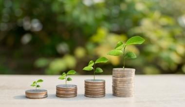 Vontobel lanciert nachhaltigen Anleihefonds