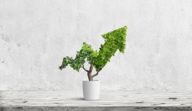 Nachhaltige Kapitalanlage: Finanzprofis erwarten neuen Boom