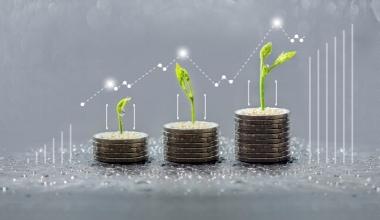 Boom bei nachhaltigen Investments in Deutschland hält an