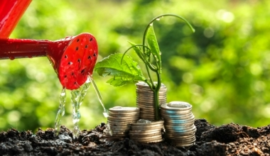 Starke Zuwächse bei nachhaltigen Geldanlagen in Deutschland