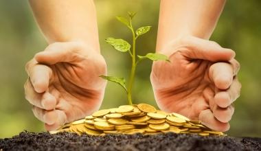 Nachhaltige Geldanlagen werden bei deutschen Sparern immer beliebter