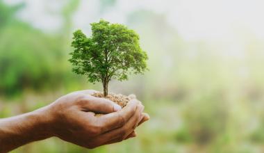 """Nachhaltige Produkte mit """"Sustainable Award in Finance"""" gekürt"""