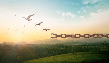 Unabhängigkeit von Vermittlern – Eine rechtliche Einordnung