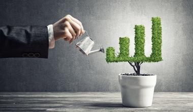 Maklerverbund STATUS auf Wachstumskurs