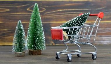 Jeder zehnte Deutsche will Weihnachtsbaum online kaufen