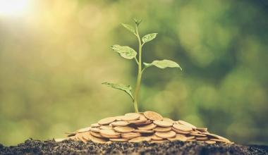 Grüne Investmentfonds zunehmend gefragt