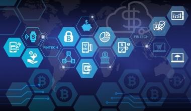 Treefin ermöglicht Identifizierung von Versicherungsdaten aus Kontoumsätzen