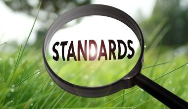 Marktstandards und Markttrends in der BU-Versicherung