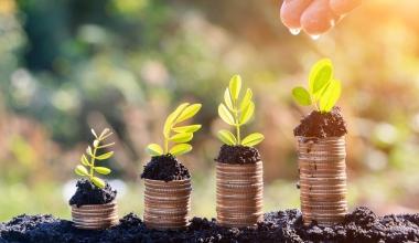 Nachhaltige Kapitalanlagen im Visier der FDP