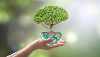 UBS Asset Management legt Nachhaltigkeitsfonds auf