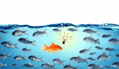 Zeus: Wachstum gegen den allgemeinen Markttrend