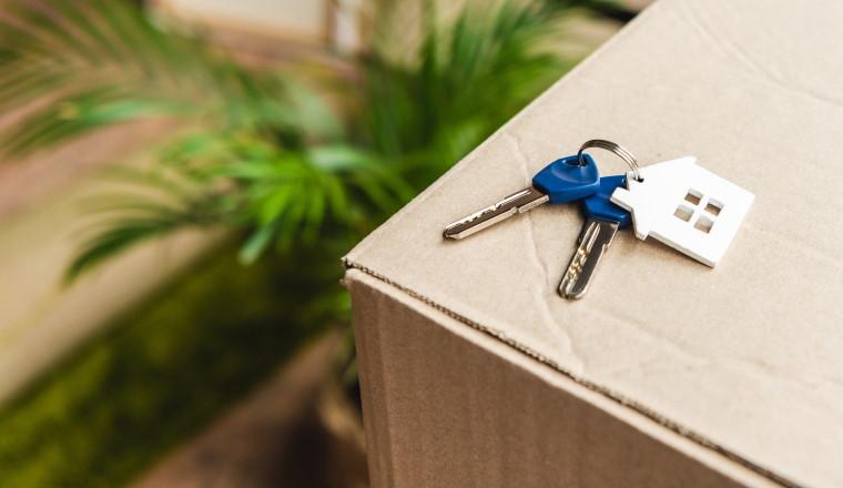 Untermieter muss Eigentümer für komplette Wohnung entschädigen