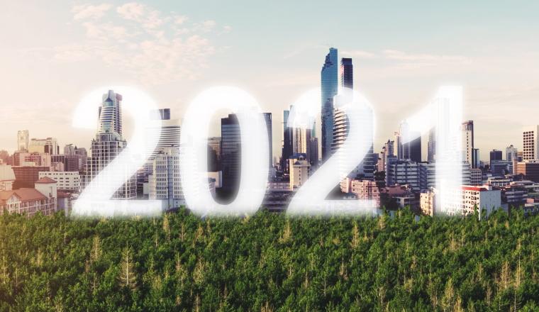Immobilieninvestoren bleiben auch 2021 in Kauflaune
